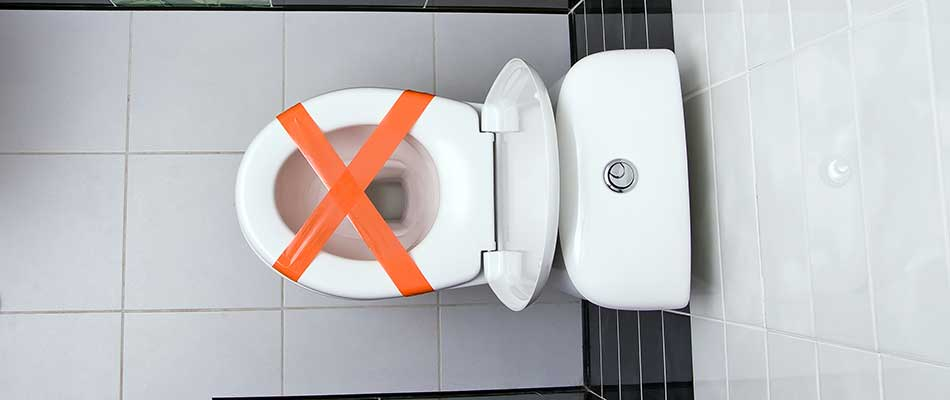 5 Items You Should Never Put Down the Drain
